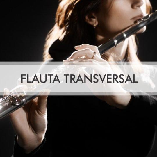 aulas flauta transversal